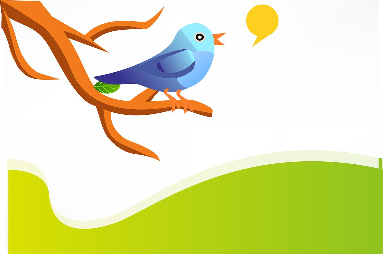 Twitts