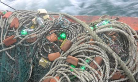 LED-Fishingnets