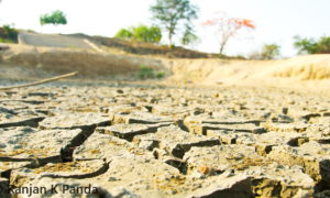 Drought story pic for Bigwire – 14 May 2016