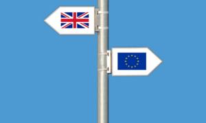 Brexit-lessons