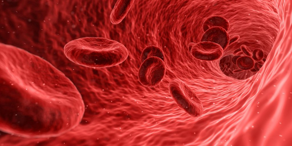 10 foods to eat after severe blood loss
