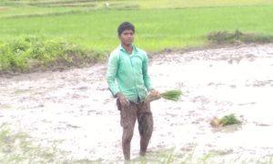 Ganesh Ch Sahoo (1)
