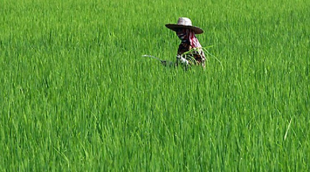 farming-l-jp-1024×569